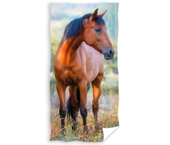 Animal Pictures Strandlaken Paard 70 x 140 Katoen