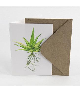 Botanopia Aloe wenskaart met envelop