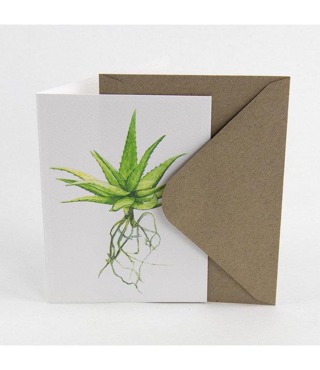 Aloe wenskaart met envelop