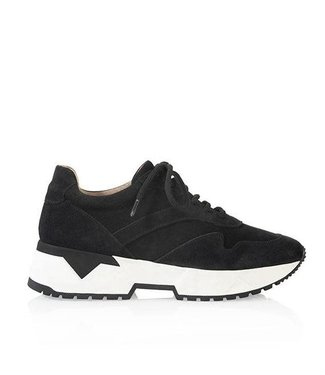 DWRS Suede Sneaker - SYDNEY