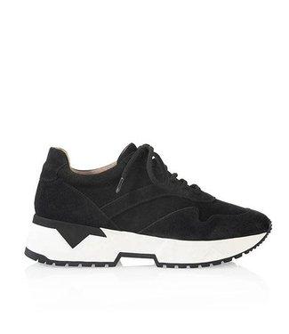 Suede Sneaker - SYDNEY