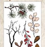 Studiolight Stamp (1) A6 Winter Trails, nr.301