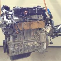 Gebruikte Motor peugeot  1.5  bleu hdi diesel (turbo) met motorcode YH01 YHZ  1638150480