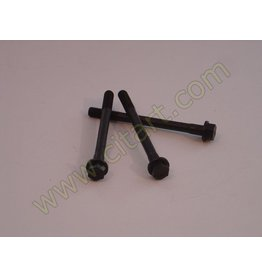 Outlet cylinder head screw (M10 x 114,5)