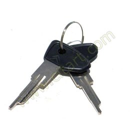 Key anti theft device 69-