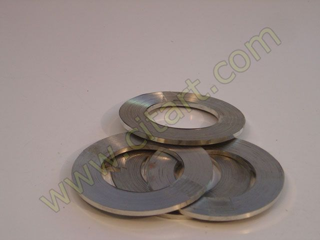 Stainless band 25m + 100 clips 5mm