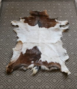 Bear Design Zicke Teppiche