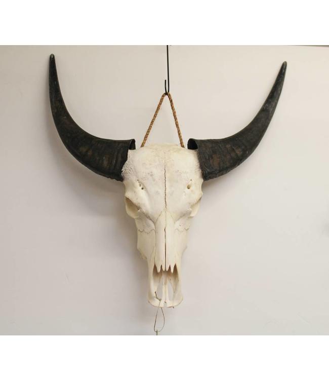 Bear Design Buffel Wand-deco
