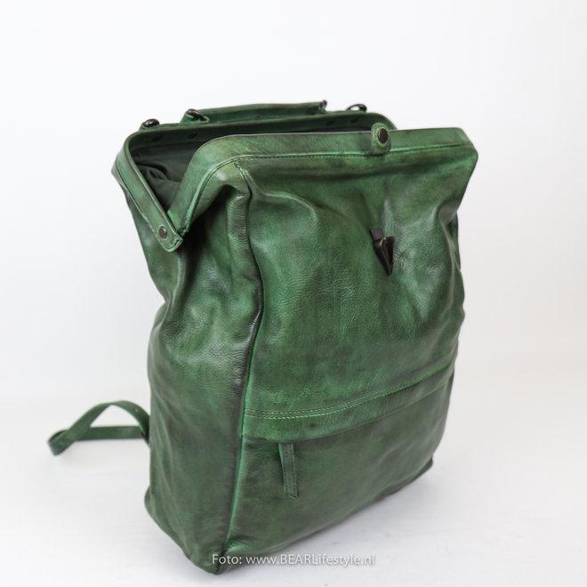 Arzttasche CL 36646 'Ross' - Grün