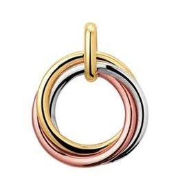 Gouden hanger - Tricolor