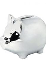 van Steyn Geboortecadeau - Verzilverde spaarpot - Varken