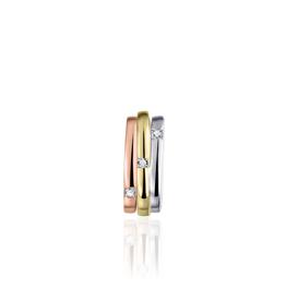 Gisser Zilver/vergulde hanger - Tricolor - Zirkonia