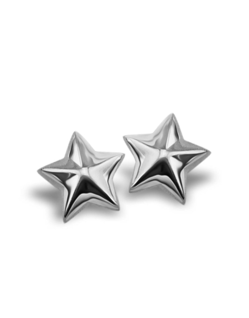 Jwls4u Jwls4u Earstuds Star 3D Silver
