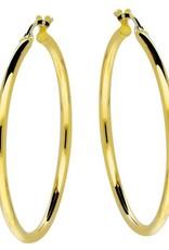 van Leeuwen Gouden creolen - 14 karaats - 34 mm - Extra gehard