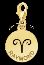 Gouden naam sterrenbeeld bedel