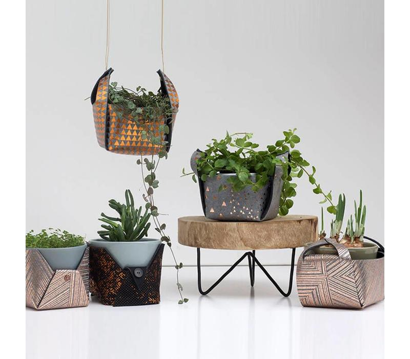 DIY plant By Lotte Martens - Lines