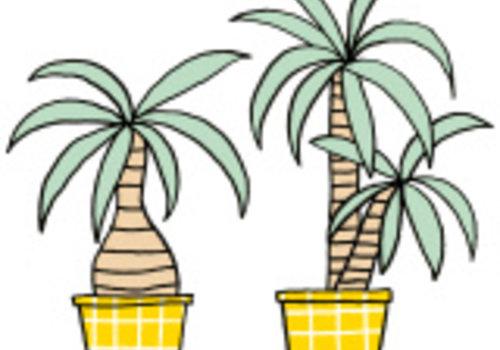 De Stoffenkamer Strijkapplicatie Eva Mouton plantjes