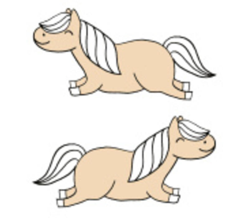 Strijkapplicatie Eva Mouton pony's