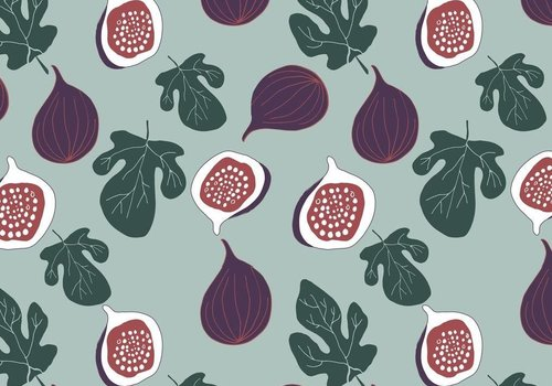 Elvelyckan Tricot fig