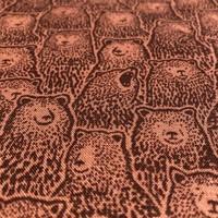 Cotton bears rust
