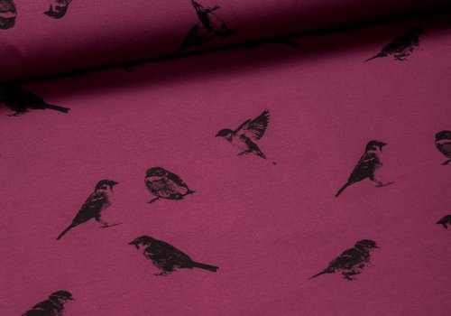 Chat Chocolat Sweater All Animals - Sparrows Bordeaux