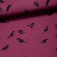 Sweater All Animals - Sparrows Bordeaux