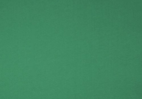 De Stoffenkamer Boordstof viridis groen