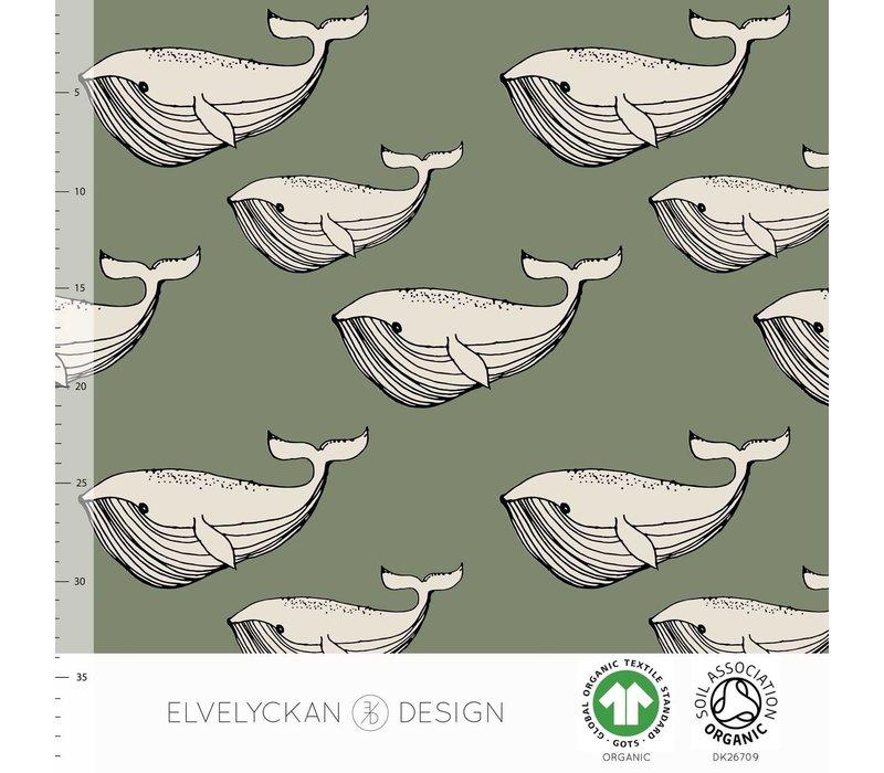 Bio tricot - Whale Green
