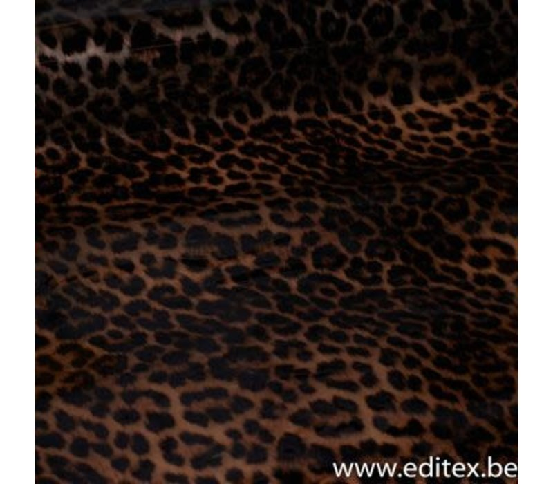 Jekker Luipaard - Abby Jas