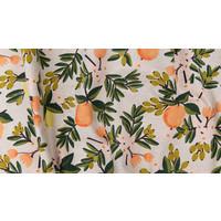 Canvas Rifle paper co. - Citrus Cream