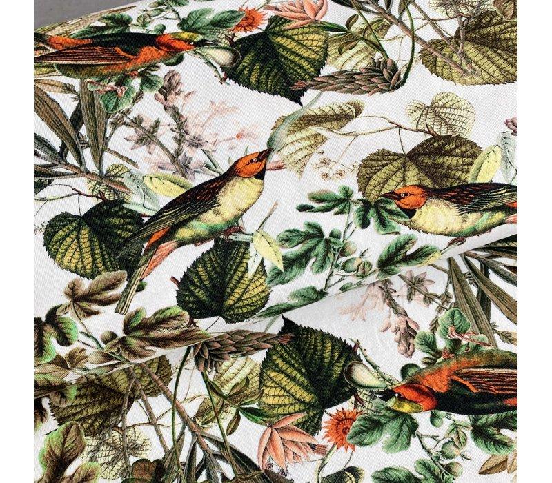Tricot  Digital Birdlife