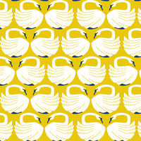 Cotton Loving swans - sundance