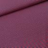 Stenzo Tricot  Stripes Red//Blue