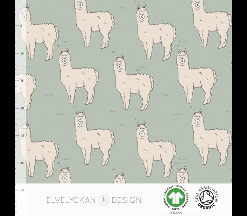 Bio tricot - Alpaca Sea Green