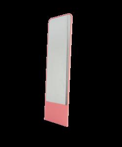 Friedrich mirror