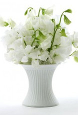 Serax The perfect vase small dia 10,5 H 10,5 cm