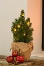 Sirius Kerstboom H35cm, groen (batterij 3xAA)