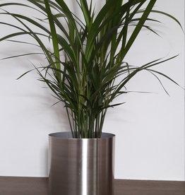 Palm + zilver metaal bloempot