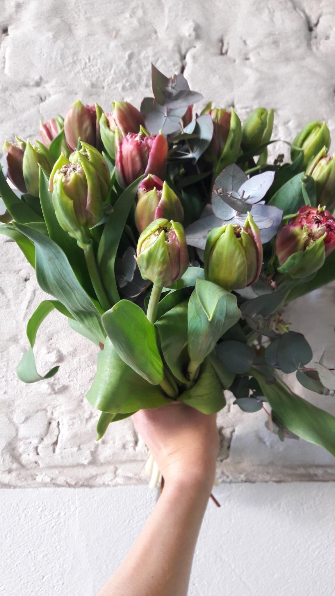 Tulpenboeket 30€ _ 30 stuks ( gemengd)