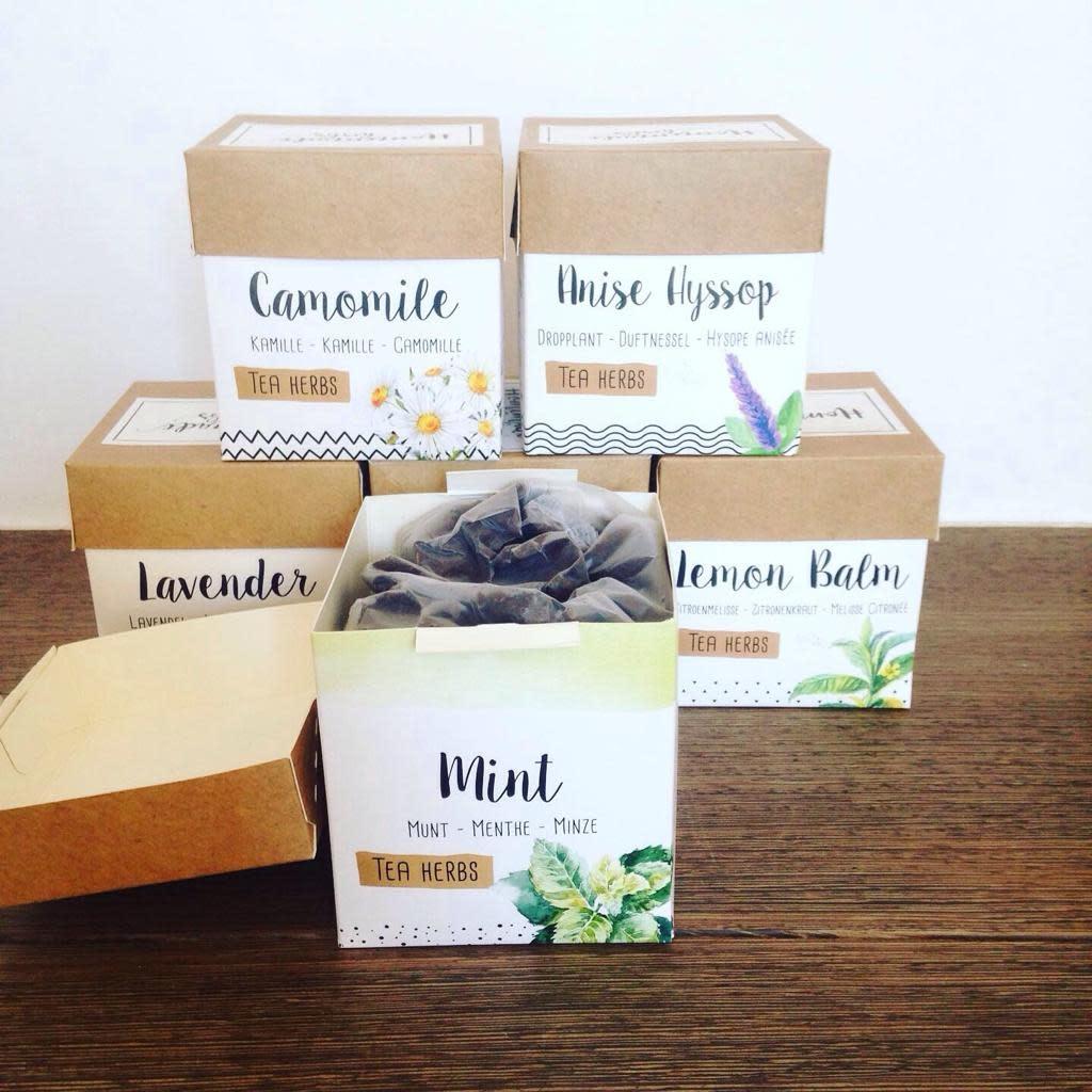 Homemade herbs tea mixed