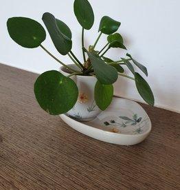 Flora cup & flora plat + Pilea plant