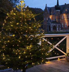 Sirius Knirke Kerstmis lichten 234L clear/green (binnen&buiten)