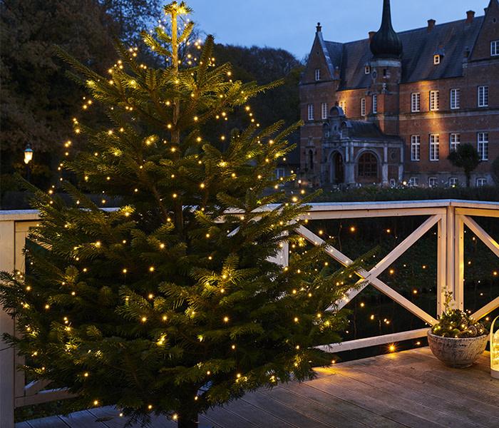 Knirke Kerstmis lichten 234L clear/green