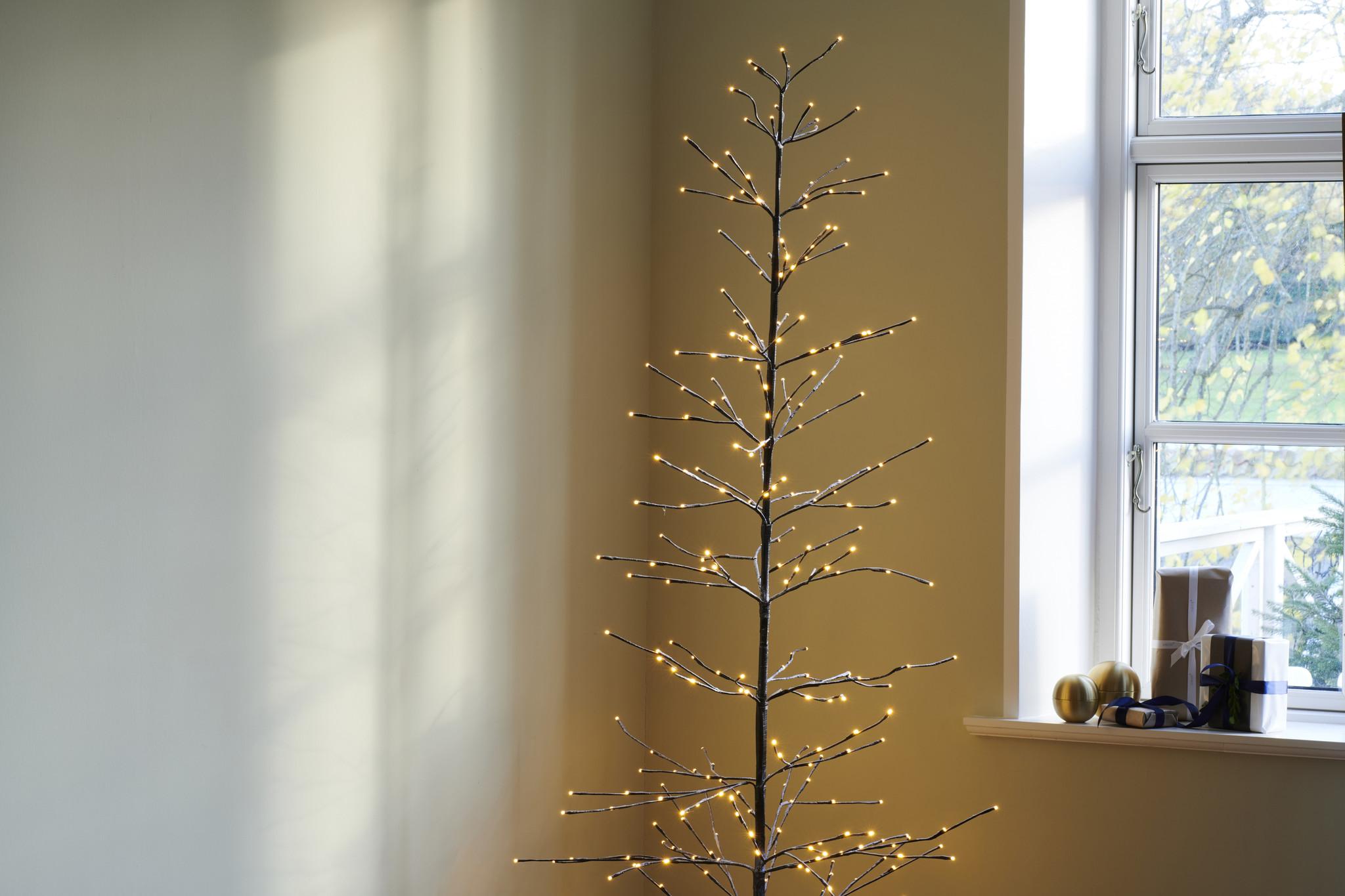 Sirius Isaac tree H2,1m Ø60cm(buiten&binnen)