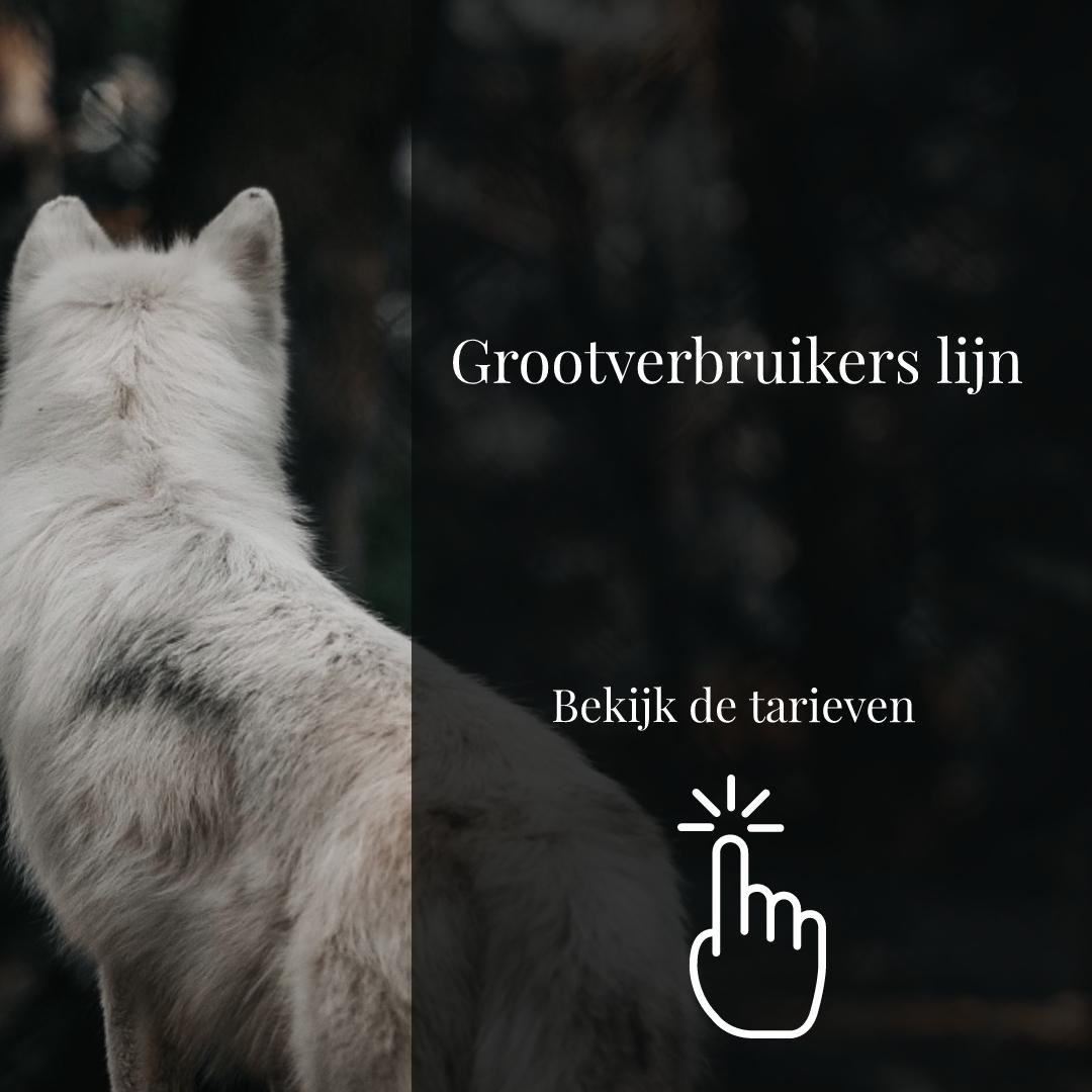 Degomeat Nederland vers vlees (kvv) voor hond & kat. banner 2