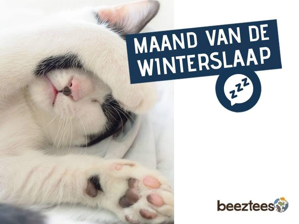Degomeat Nederland vers vlees (kvv) voor hond & kat. banner 1