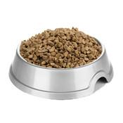 Indoor | Kattenbrokken | Speciaal droog kattenvoer voor katten die alleen binnenshuis leven.