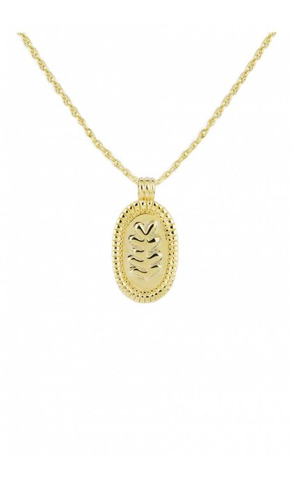 Wildthings Collectables Matisse Necklace Goldplated