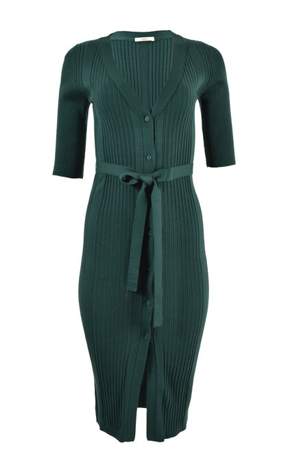 Sessun Lia June Green Long Cardigan Dress