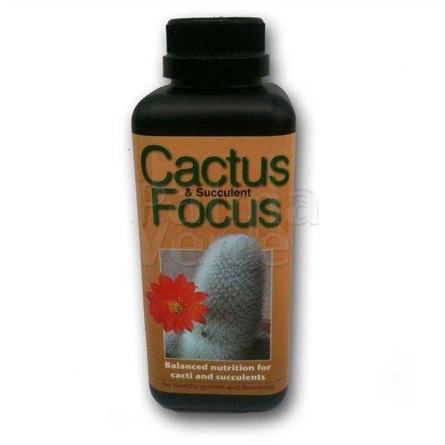 Produkten-products Cactus Focus